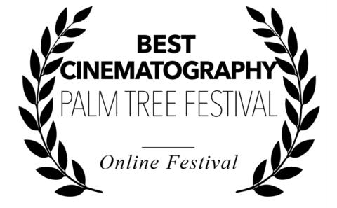 Palm Tree Festival - best cinematography for Bitch, Popcorn & Blood